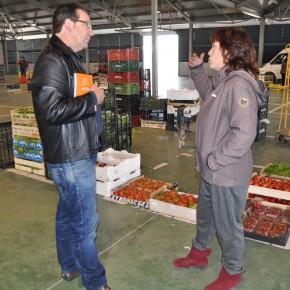 Ciudadanos (C's) Lleida solicitará al equipo de Gobierno una reorganización del mercado de frutas y verduras de proximidad
