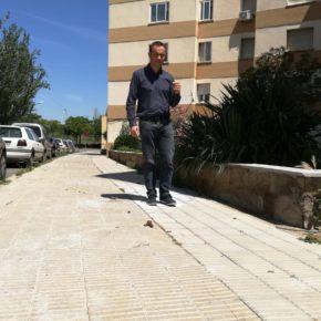 Cs Lleida pide impulsar una campaña de civismo sobre la recogida de deposiciones de perros para mantener una ciudad más limpia