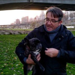 """José María Córdoba: """"Adopta un perro, no lo compres"""""""
