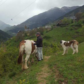 """Rivas: """"Es necesario trabajar para que el sector agrario tenga unas condiciones que inviten a la gente a quedarse"""""""